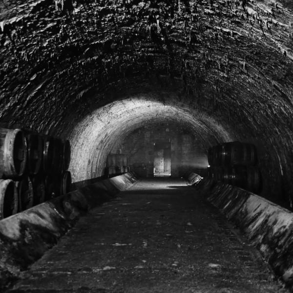 Caveforum.jpg