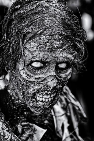 Zombie2forum.thumb.jpg.5aa0deb46966f43c925f4bb80ce781c3.jpg