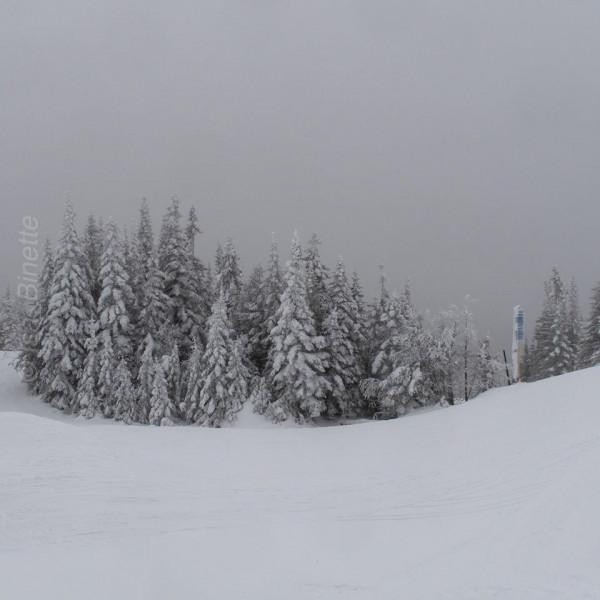 Monts Valin.jpg